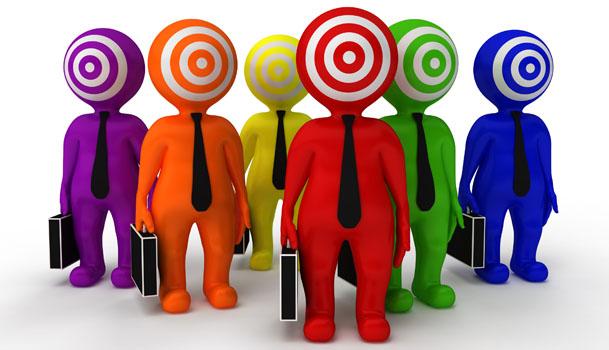 Target market / niche